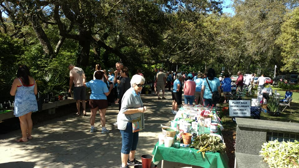 2019 plant sale at library